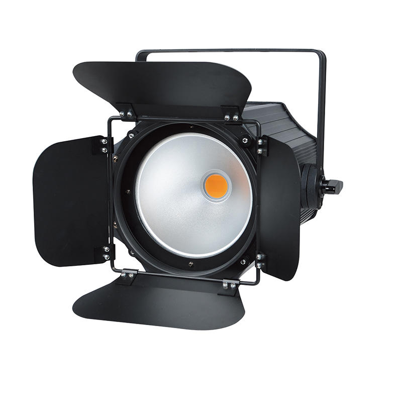 200W LED COB PAR Light